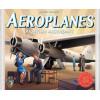 Aeroplanes: Aviation Ascendant Thumb Nail