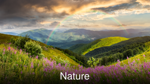 Leisure Hotels  Explore the Nature in Uttarakhadn at Leisure Hotels