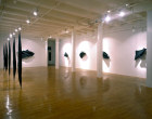 Installation View - Black Flags